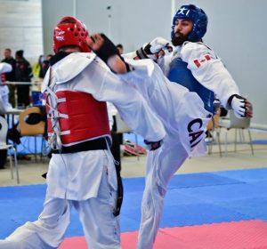 competitive martial arts programs