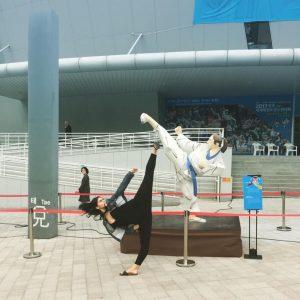 Durham Taekwondo Competitive Program